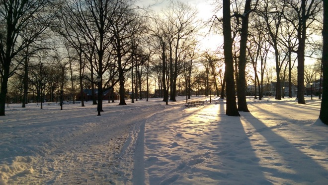 Frigid cold, but the light in winter always amazes.